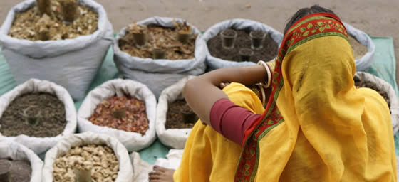 Delhi: Spices for Sale