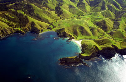 Northland coastline