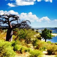 Safari in the South, 36 Days