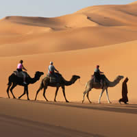 Morocco - Marrakech & Sahara, 8 Days