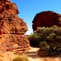 Alice, Uluru & Kings Canyon Adventure, 5 Days