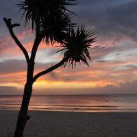 Tangalooma Island Resort, Moreton Island 1 Night | Moreton Island