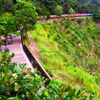 Cairns, Kuranda, Skyrail and Rail