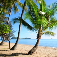 Palm Cove 5 Nights, 4-Star