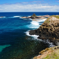 Melbourne, Phillip Island Ultimate Eco Tour