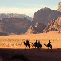 New Years in Wadi Rum, 8 Days