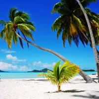 Fiji Flights + STAY 5 Nights, PAY 3 - Departing Sydney