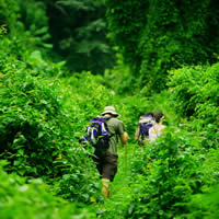 The Kokoda Track, 10 Days