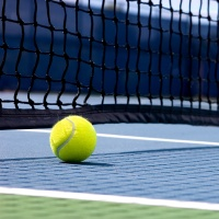 Australian Open 2014 - Quarter Finals Package