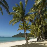 Reef View Hotel, Hamilton Island Flights + 5 Nights, 4-Star | Hamilton Island