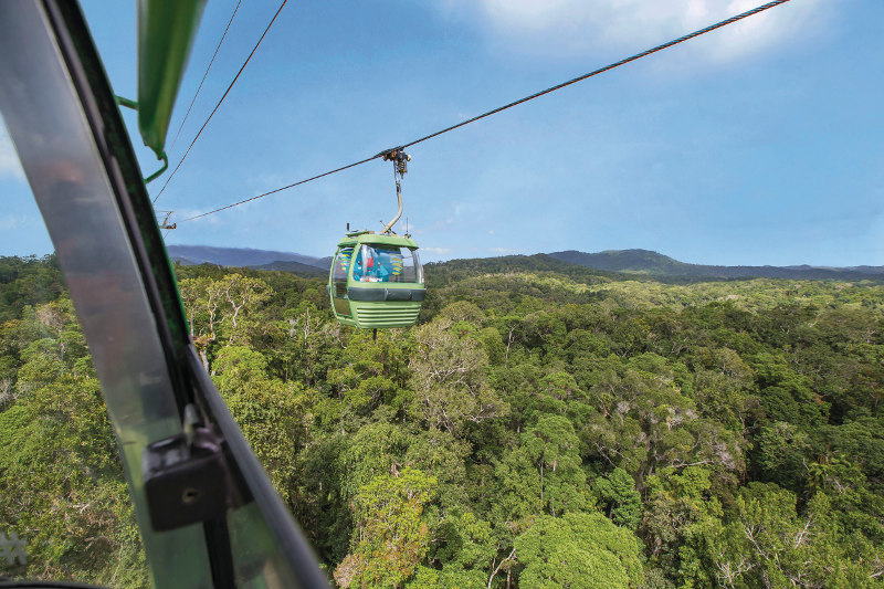 View from the Cairns Skyrail over the rainforest canopy