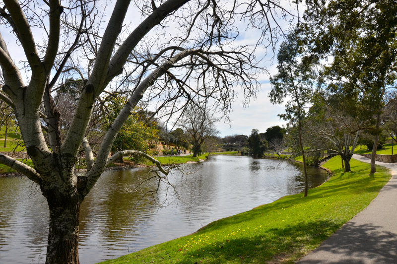 A path along the River Torrens in Adelaide, South Australia.