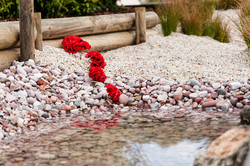 A close-up of a garden pond with white pebbles and red flowers.