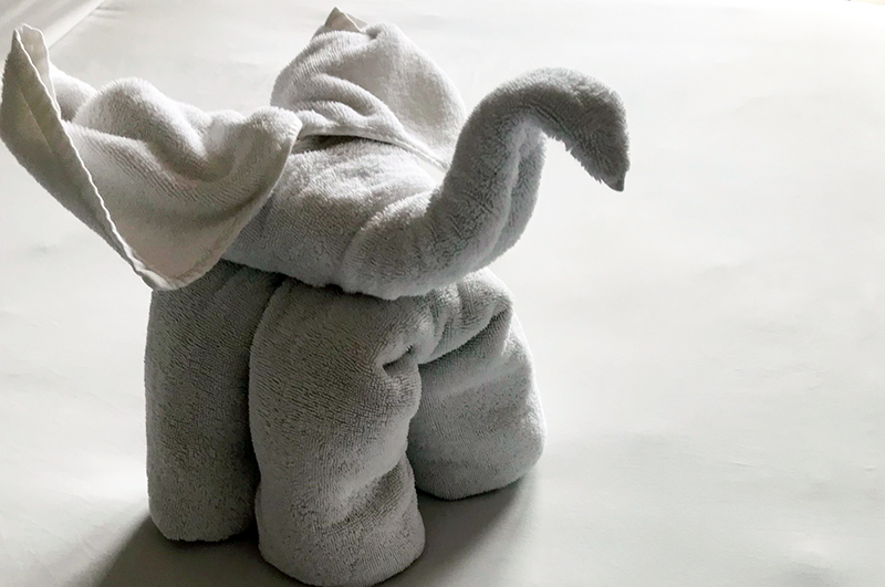Towel animal at resort in Bali