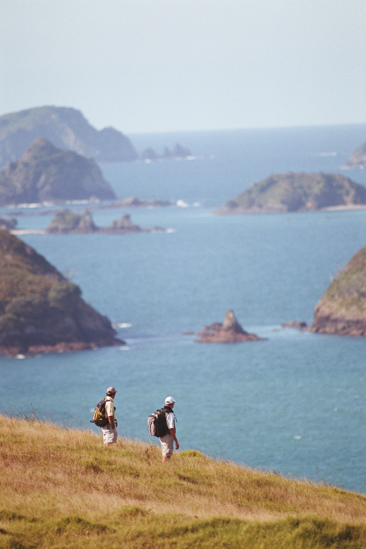 Two men hiking in the bay of islands