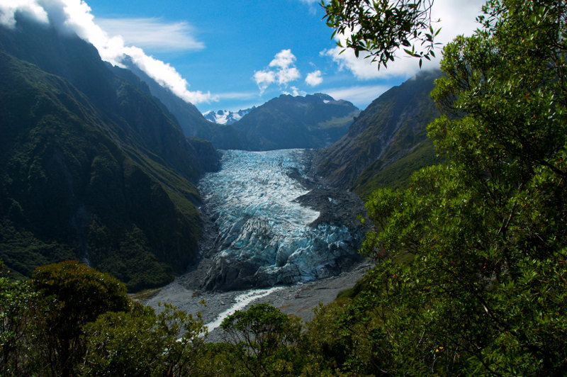 Fox glacier flows down from snowy peaks to rainforest.