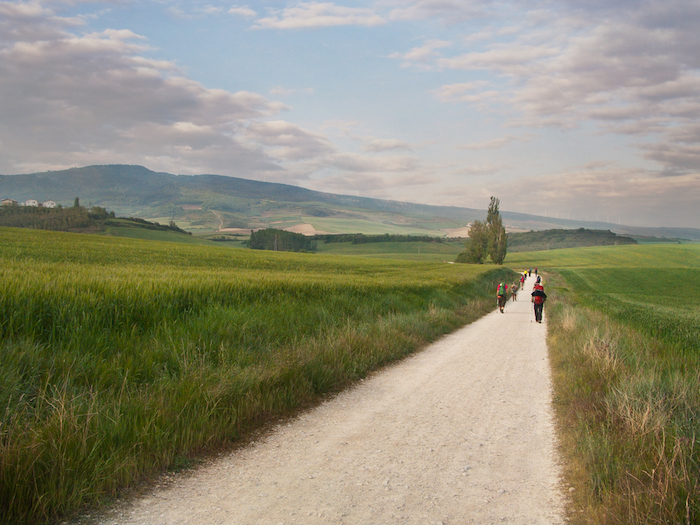 Pilgrims and walkers on the Camino de Santiago in Spain