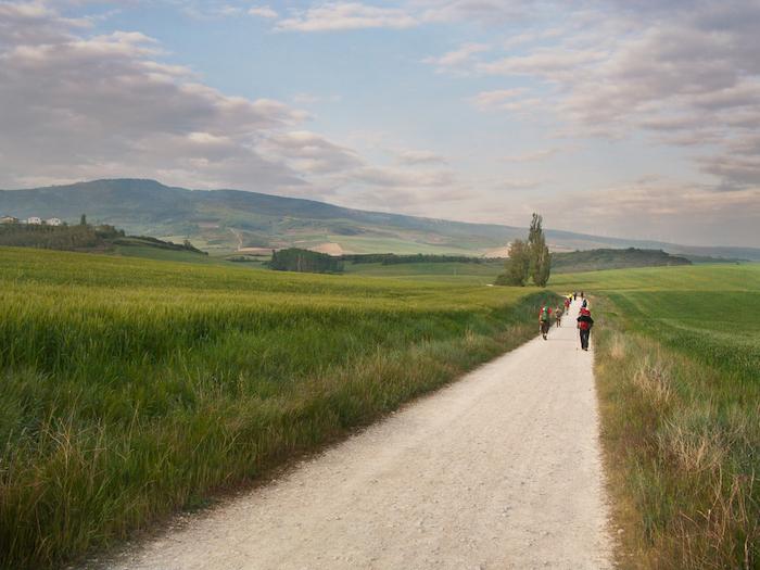 Pilgrims and walkers on the Camino de Santiago in Spain