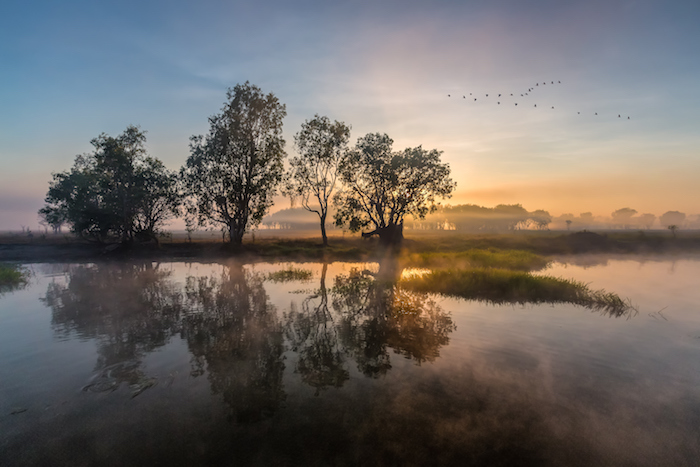 Sunrise over a wetland in Kakadu national park