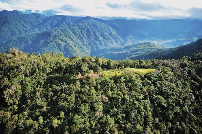 Aerial of the dense jungle around Kokoda Track in Papua New Guinea