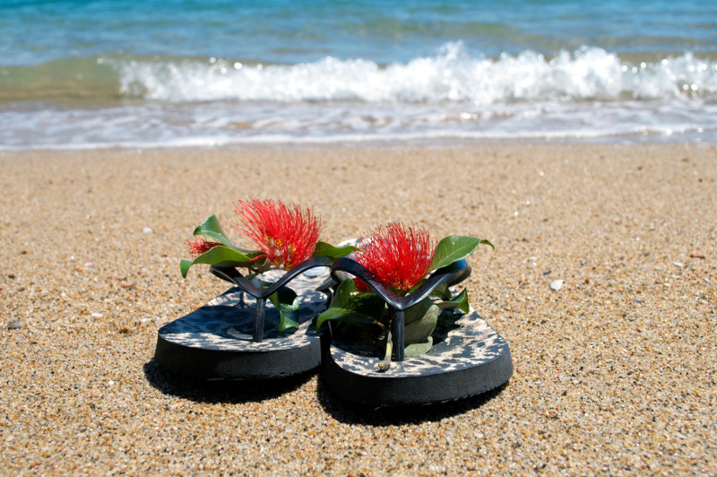 Flower-decorated thongs on a beach.