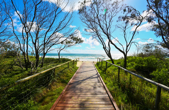 A boardwalk leading out to the beach