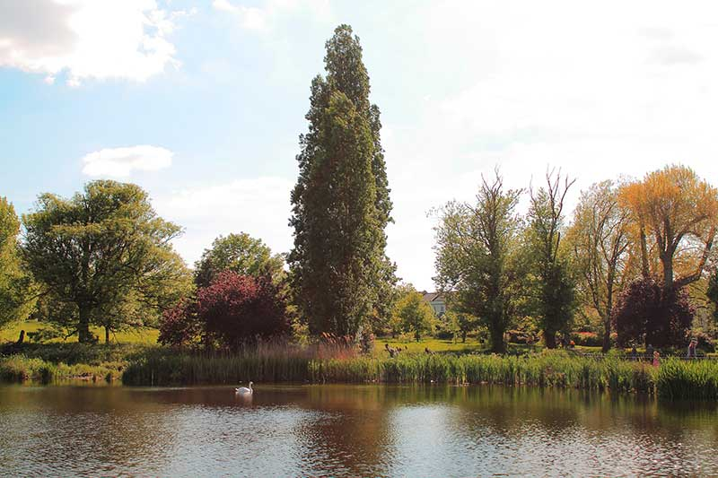 Brockwell park london