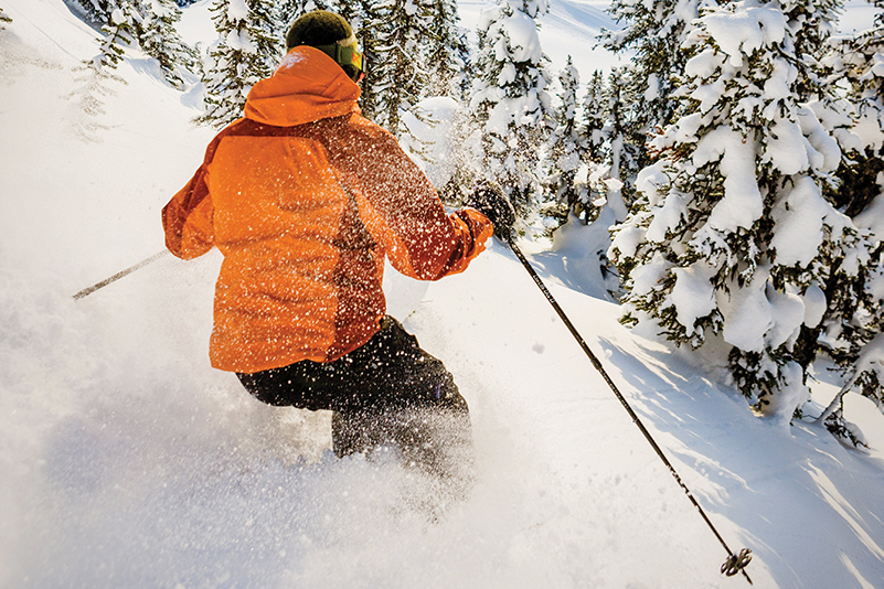 Skier in the Monashee Mountains, BC