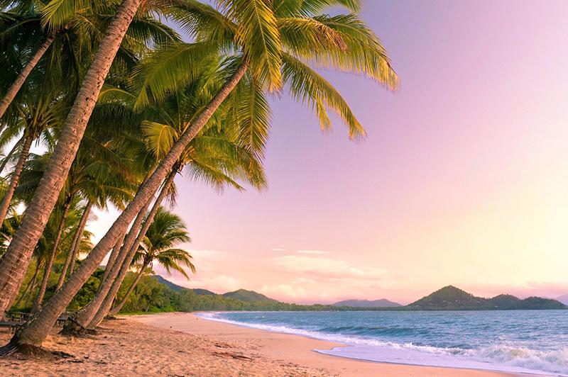 beach sunset in Cairns