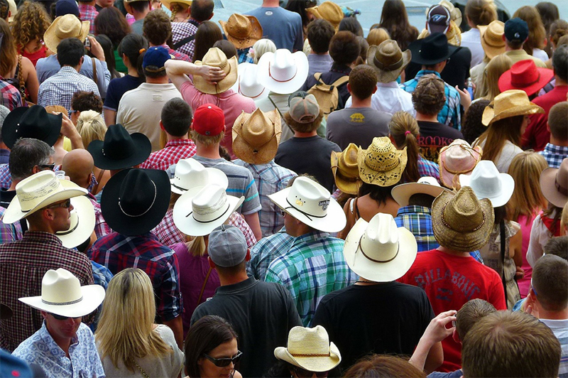 Crowds at the Calgary Stampede