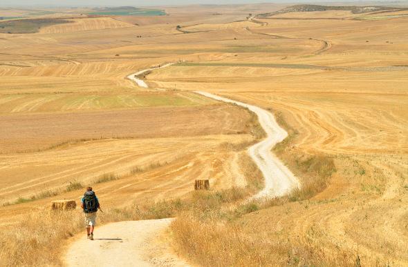 a person walking along the Camino de Santiago trail