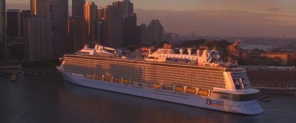 ovation of the seas in sydney harbour sunrise