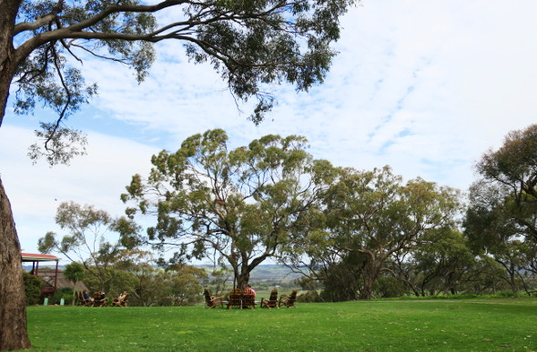 Views from d'arenberg winery in the McLaren Vale