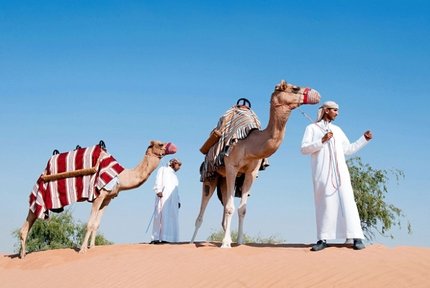 Take a camel ride. Photo: Banyan Tree Al Wadi, Banyan Tree Hotels & Resorts