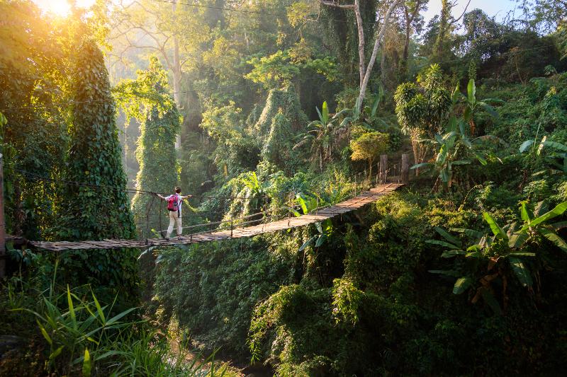Chiang Mai Thailand trekking heaven.