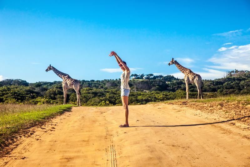 Girl with giraffes.