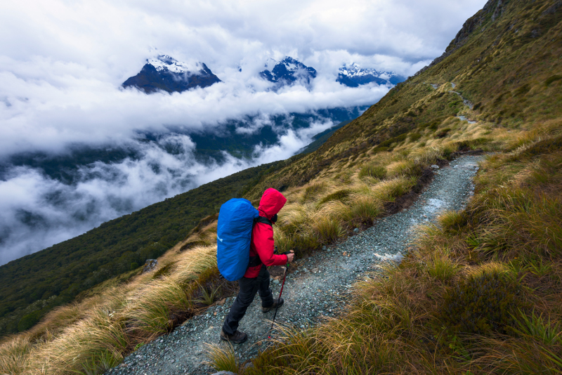 Routeburn Track near Glenorchy.