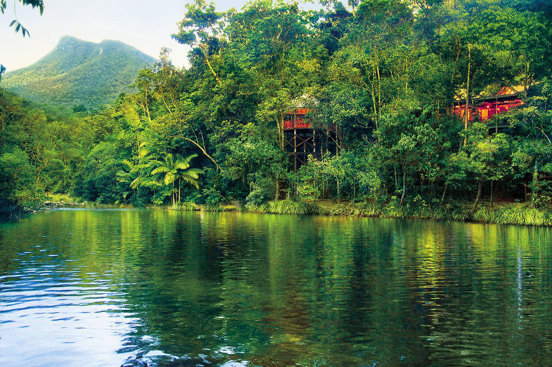 Silky Oaks Lodge shrouded in the leafy Daintree by the MOssman River.