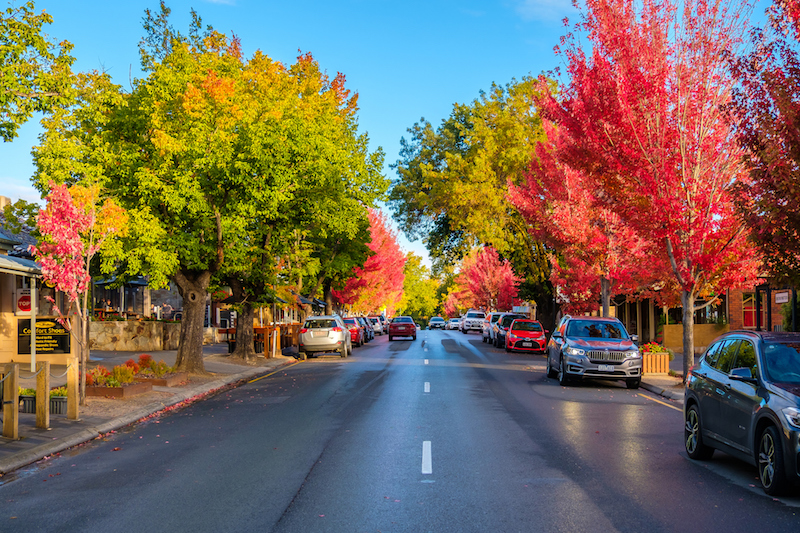 Hahndorf south australia in autumn