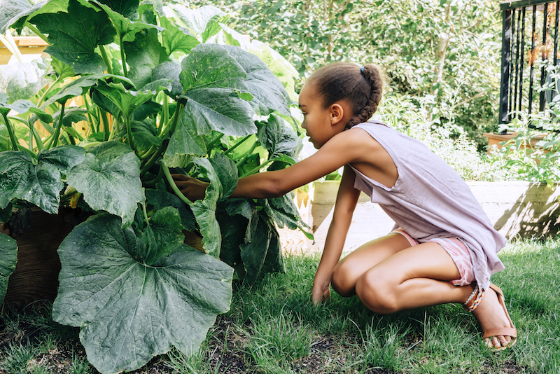 girl with pumpkin plant