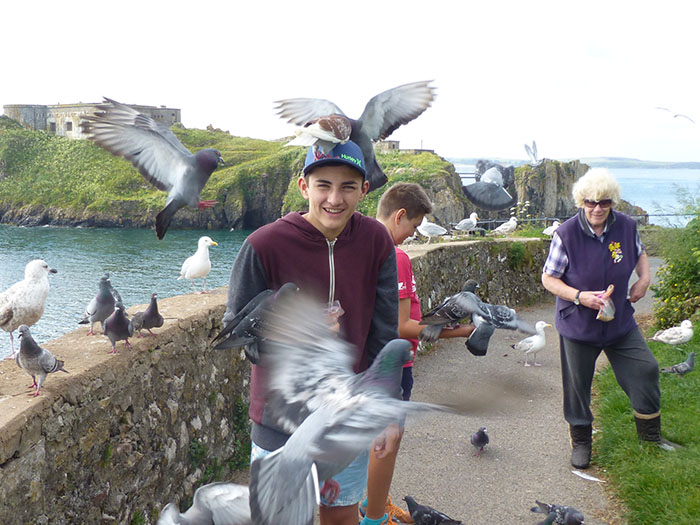 Feeding rock pigeons and seagulls in Tenby.