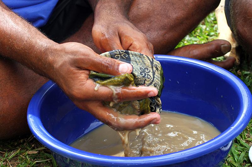 Preparing kava in Fiji