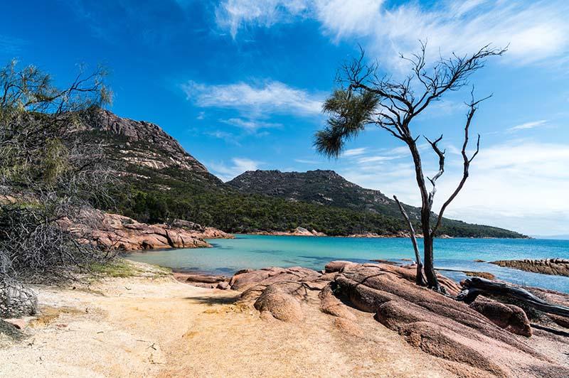 honeymoon bay in freycinet national park