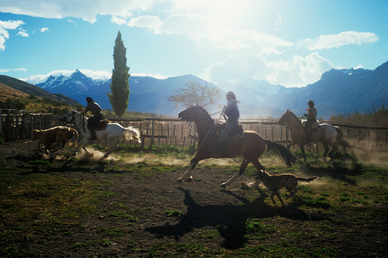 Cowboys in south america