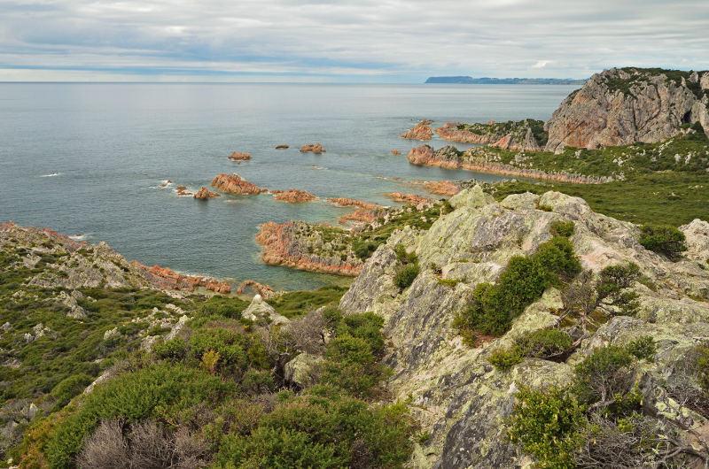 rocky cape tasmania
