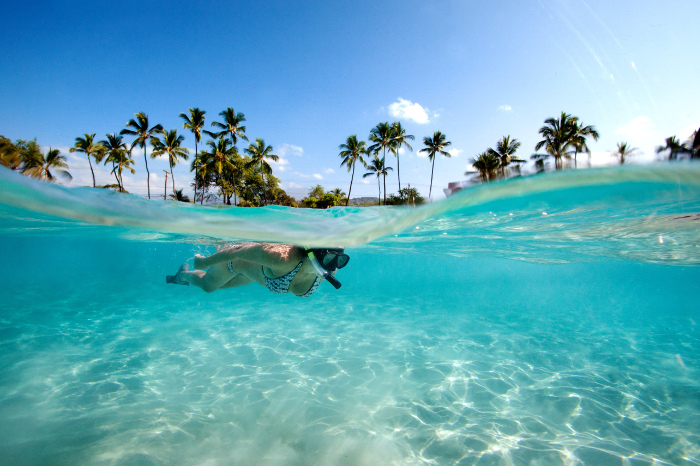 Woman snorkelling in waters with palm trees behind