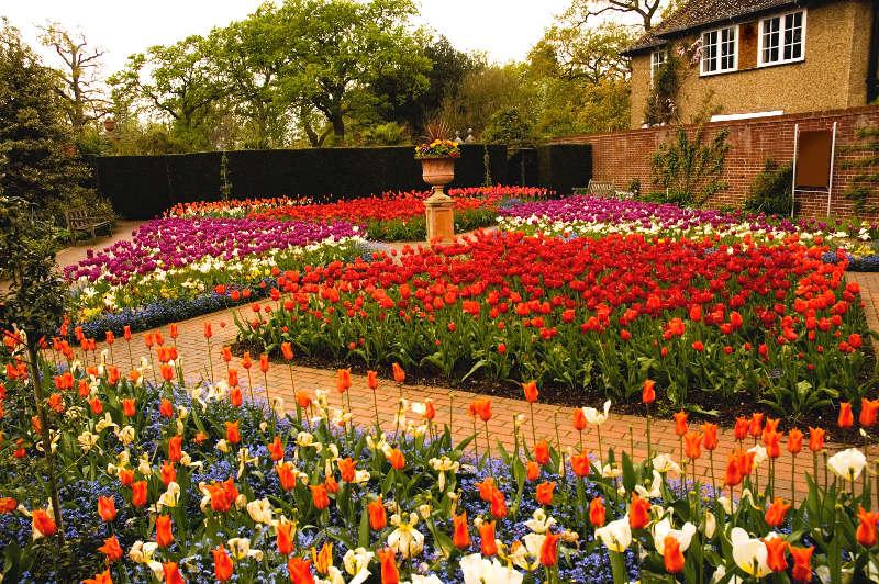 Wisley Gardens, England, United Kingdom