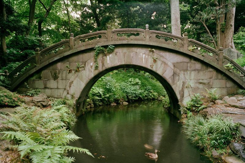 half-moon bridge