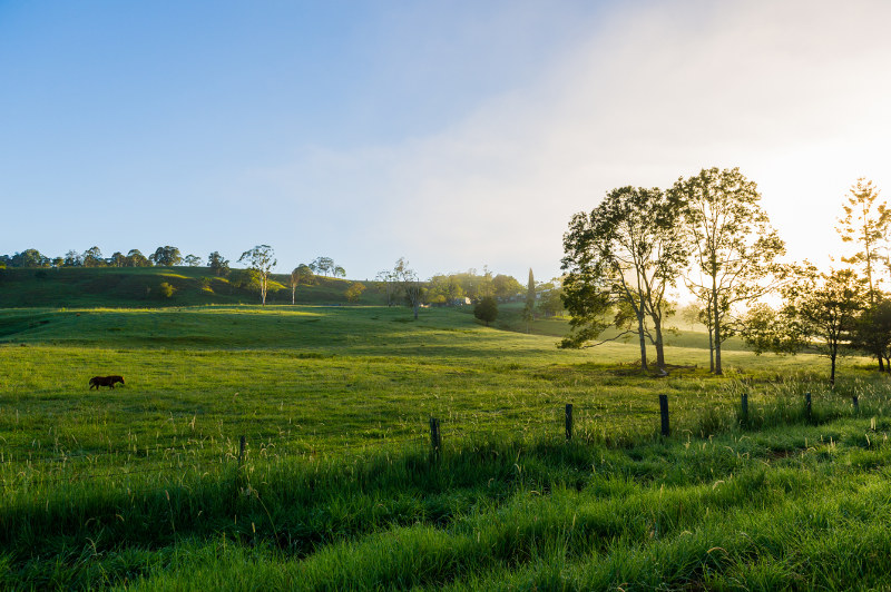 Tranquil scene of countryside in Northern Rivers Region, New South Wales