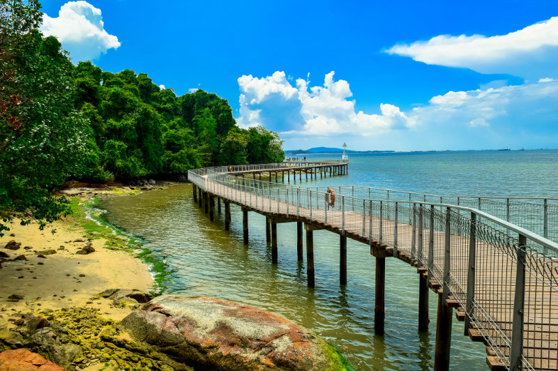 Boardwalk over water, Pulau Ubin island Singapore